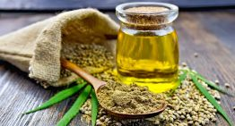 Queensland toddler given cannabis oil by a deregistered doctor