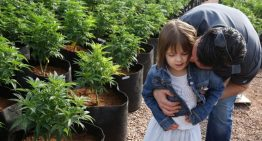 Bod Australia to use medical cannabis for epilepsy treatment