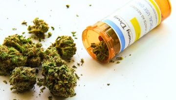 WA patients can't access medicinal cannabis despite legalisation last year